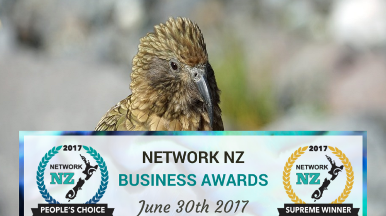 network nz business awards