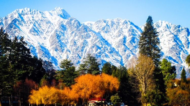 winter remarkables NZ Entrepreneur
