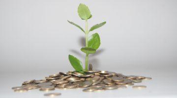 raising seed capital